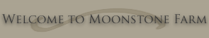 Welcome to Moonstone Farm